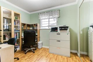 Photo 14: 3756 ULSTER Street in Port Coquitlam: Oxford Heights House for sale : MLS®# R2584347