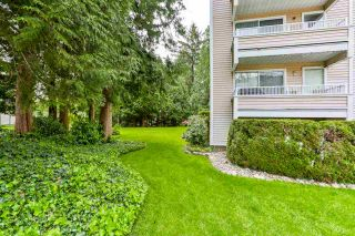 """Photo 20: 102 9644 134 Street in Surrey: Whalley Condo for sale in """"Parkwoods - Fir"""" (North Surrey)  : MLS®# R2270857"""