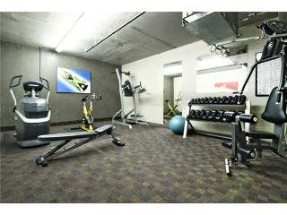 Photo 18: 4206 250 2 Avenue: Rural Bighorn M.D. Townhouse for sale : MLS®# C3647333