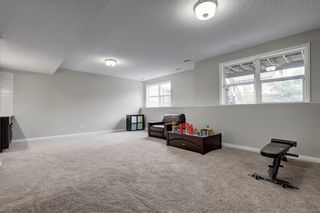 Photo 21: 74 Evansfield Park NW in Calgary: Evanston House for sale : MLS®# C4187281