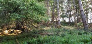 Photo 5: 188 MARINERS Way: Mayne Island Land for sale (Islands-Van. & Gulf)  : MLS®# R2589235