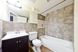 Photo 27: 5164 Coral Shores Drive NE in Calgary: Coral Springs Detached for sale : MLS®# A1061556