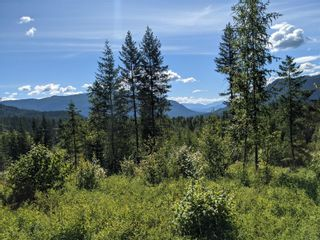 Photo 10: 455 Albers Road, in Lumby: Agriculture for sale : MLS®# 10235228