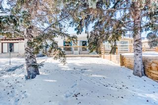 Photo 1: 2015 40 Street SE in Calgary: Forest Lawn Semi Detached for sale : MLS®# A1068609