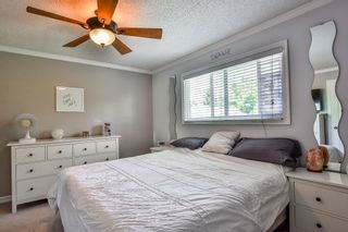 Photo 8: 26679 30A Avenue in Langley: Aldergrove Langley House for sale : MLS®# R2186545