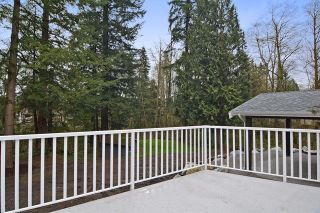 Photo 17: 4722 SADDLEHORN CRESCENT in Langley: Salmon River House for sale : MLS®# R2049761