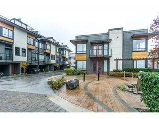 Photo 1: 6 7811 209 Street in Langley: Willoughby Heights Townhouse for sale : MLS®# R2320054