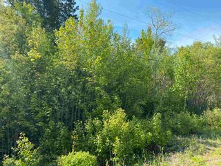 Photo 6: Lot 2 Egypt Road in Little Harbour: 108-Rural Pictou County Vacant Land for sale (Northern Region)  : MLS®# 202117045
