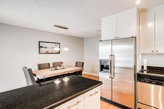 Photo 23: 508 Mckinnon Drive NE in Calgary: Mayland Heights Detached for sale : MLS®# A1154496