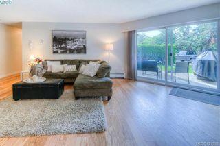 Photo 4: 102 3800 Quadra St in VICTORIA: SE Maplewood Condo for sale (Saanich East)  : MLS®# 835010