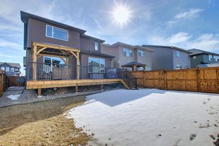Photo 47: 210 Evansglen Drive NW in Calgary: Evanston Detached for sale : MLS®# A1080625