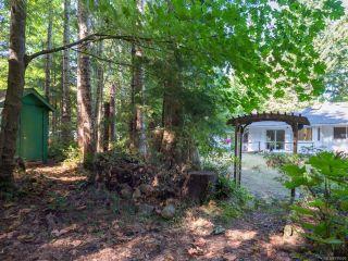 Photo 46: 7711 Vivian Way in FANNY BAY: CV Union Bay/Fanny Bay House for sale (Comox Valley)  : MLS®# 795509