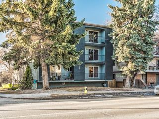 Photo 3: 202 1603 26 Avenue SW in Calgary: South Calgary Apartment for sale : MLS®# A1100163