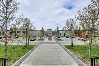 Photo 18: 820 200 BELLEROSE Drive: St. Albert Condo for sale : MLS®# E4246399