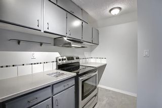 Photo 8: 11 711 3 Avenue SW in Calgary: Downtown Commercial Core Apartment for sale : MLS®# A1125980