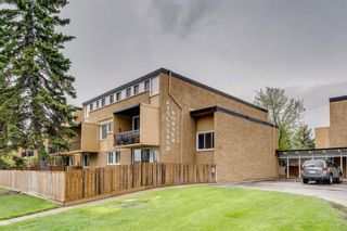 Photo 32: 212 7007 4A Street SW in Calgary: Kingsland Apartment for sale : MLS®# A1112502