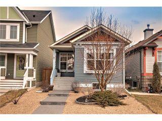 Photo 25: 133 NEW BRIGHTON Green SE in Calgary: New Brighton House for sale : MLS®# C4111608