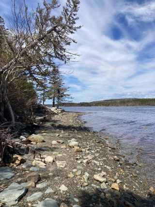 Photo 2: Lot 1 West Liscomb Point in West Liscomb: 303-Guysborough County Vacant Land for sale (Highland Region)  : MLS®# 202114674