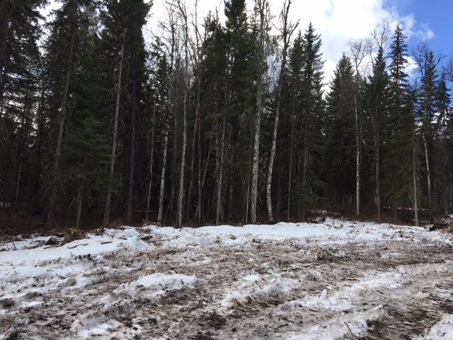 Photo 4: Photos: LOT 1 MARSH Road in Quesnel: Quesnel - Rural West Land for sale (Quesnel (Zone 28))  : MLS®# R2560822