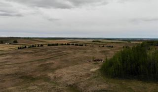Photo 12: Viewmar Drive: Rural Ponoka County Land for sale : MLS®# C4288523