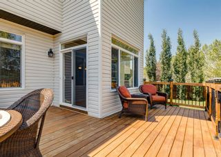 Photo 45: 176 Hawkmere Way: Chestermere Detached for sale : MLS®# A1129210