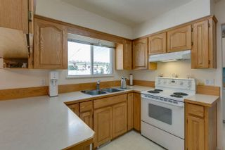 Photo 16: 21946 CLIFF Place in Maple Ridge: West Central House for sale : MLS®# R2229977