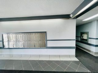 Photo 3: 308 600 KIRKNESS Road in Edmonton: Zone 35 Condo for sale : MLS®# E4265152