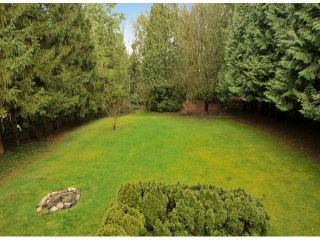 """Photo 17: 14358 GREENCREST Drive in Surrey: Elgin Chantrell House for sale in """"Elgin Creek Estates"""" (South Surrey White Rock)  : MLS®# F1404009"""
