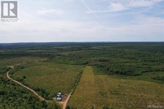 Photo 19: 550 Cookville Road in Out of Board: Agriculture for sale : MLS®# NB050249