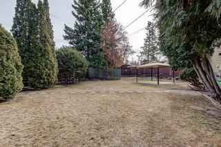 Photo 42: 8915 142 Street in Edmonton: Zone 10 House for sale : MLS®# E4236047