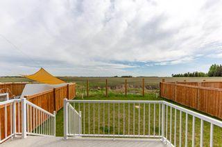 Photo 46: 16615 18 Avenue in Edmonton: Zone 56 House for sale : MLS®# E4246800