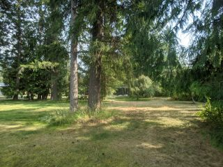 Photo 9: Lot 16-17 NELSON STREET in Slocan: Vacant Land for sale : MLS®# 2460223