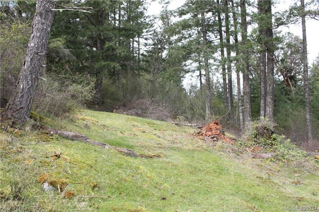 Photo 9: Photos: 414 Stewart Rd in SALT SPRING ISLAND: GI Salt Spring Land for sale (Gulf Islands)  : MLS®# 784416