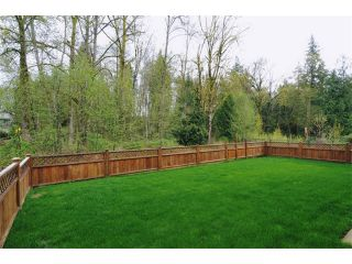 """Photo 10: 11590 238A Street in Maple Ridge: Cottonwood MR House for sale in """"THE MEADOWS AT CREEKSIDE"""" : MLS®# V886773"""