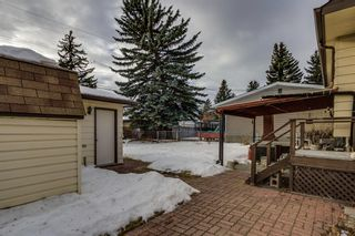Photo 23: 3511 34 Avenue SW in Calgary: Rutland Park Detached for sale : MLS®# A1061908