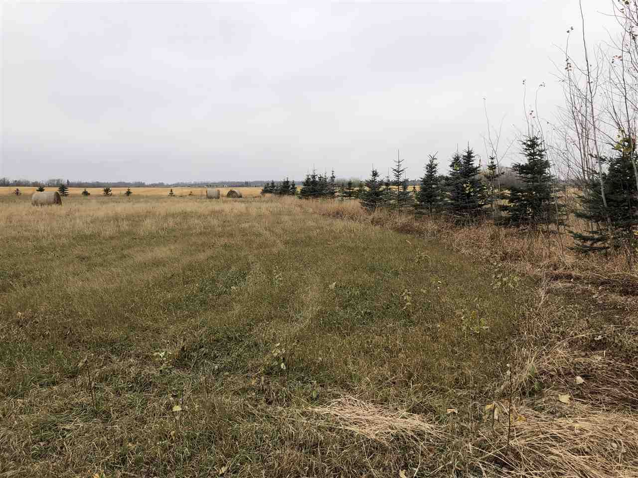Main Photo: Twp Rd 583 Rge Rd 271: Rural Westlock County Rural Land/Vacant Lot for sale : MLS®# E4218422