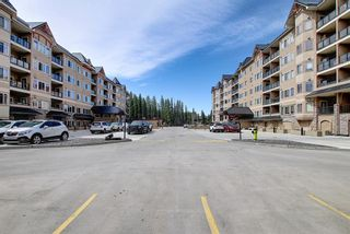 Photo 3: 210 30 DISCOVERY RIDGE Close SW in Calgary: Discovery Ridge Apartment for sale : MLS®# A1094789