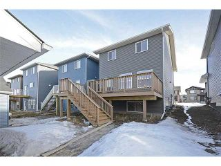 Photo 17: 567 EVANSTON Drive NW in : Evanston Residential Detached Single Family for sale (Calgary)  : MLS®# C3597045