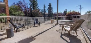Photo 8: 110 165 MANORA Place NE in Calgary: Marlborough Park Apartment for sale : MLS®# A1028754