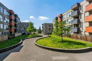 Photo 16: 318 12085 228 Street in Maple Ridge: East Central Condo for sale : MLS®# R2442173