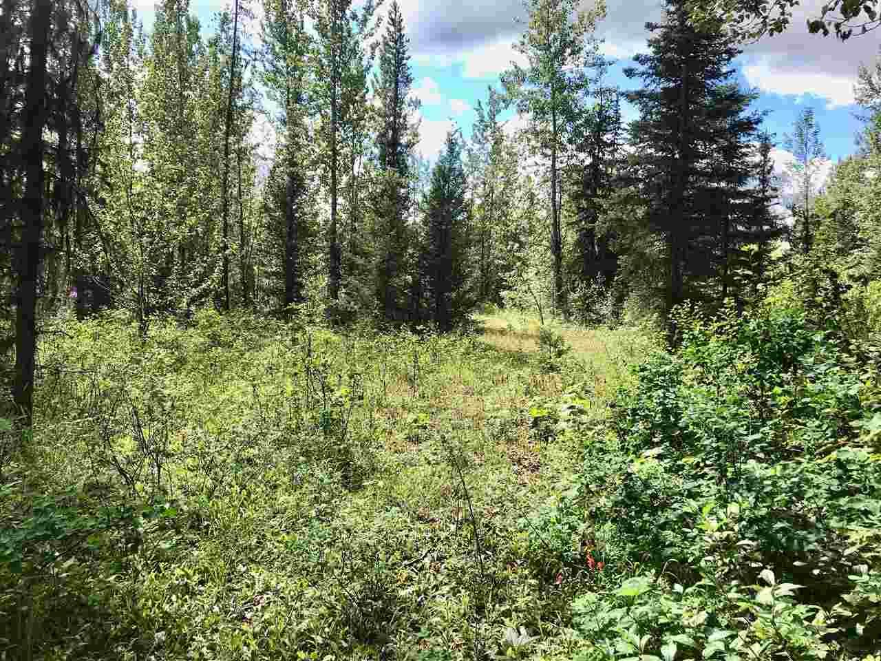 Main Photo: LOT 10 ISLAND PARK Drive in Prince George: Miworth Land for sale (PG Rural West (Zone 77))  : MLS®# R2388123