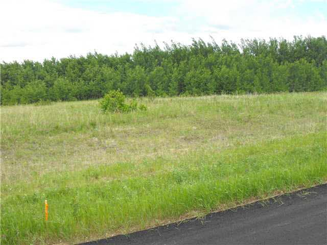 Main Photo: 105 56514 Rd Rg 60 Drive: Rural St. Paul County Rural Land/Vacant Lot for sale : MLS®# E4204217