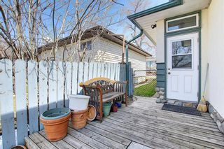 Photo 27: 1435 16 Street NE in Calgary: Mayland Heights Detached for sale : MLS®# A1099048