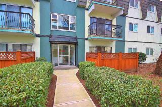 """Photo 1: 156 8131 RYAN Road in Richmond: South Arm Condo for sale in """"MAYFAIR COURT"""" : MLS®# R2340034"""