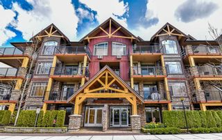 Photo 1: 108 8328 207A STREET in Langley: Willoughby Heights Condo for sale : MLS®# R2162280