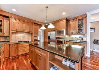 Photo 7: 17045 Greenway Drive in Waterford Estates: Home for sale : MLS®# F1448750