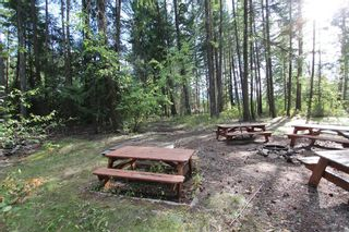 Photo 17: 4180 Squilax Anglemont Road in Scotch Creek: North Shuswap House for sale (Shuswap)  : MLS®# 10078424