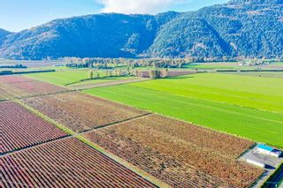 Photo 8: 4081 DIXON Road: Agri-Business for sale in Abbotsford: MLS®# C8035569