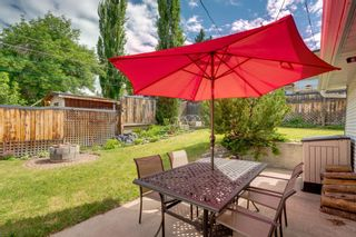 Photo 40: 3204 15 Street NW in Calgary: Collingwood Detached for sale : MLS®# A1124134