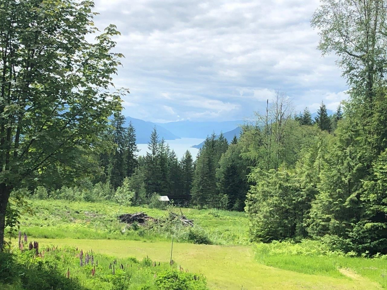 Main Photo: DL 10026 NEEDLES NORTH RD in Needles: House for sale : MLS®# 2459280